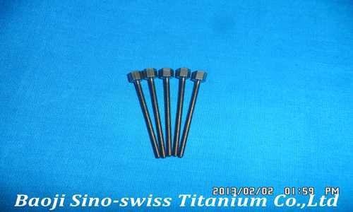 Titanium long screw