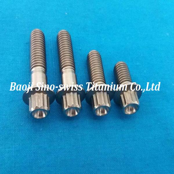 12pt titanium bolts | Baoji Sino-Swiss Titanium Co